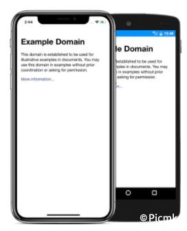苹果WebView/URL或HTML直接包装成iOS应用程序并且带Push/API插图1